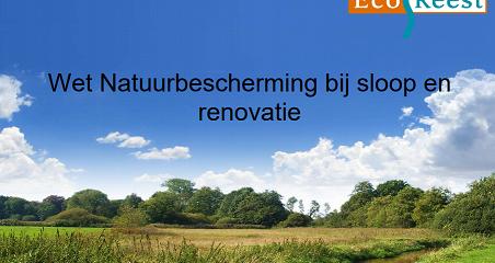 Woningverbetering in strijd met Wet Natuurbescherming